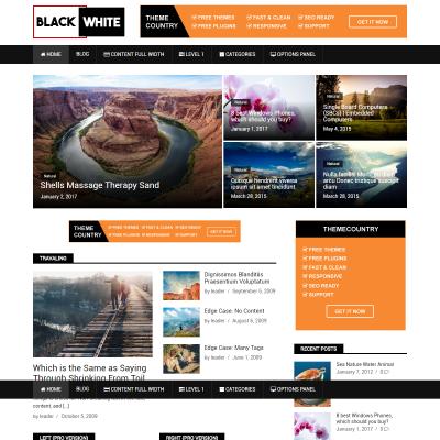 BlackWhite Lite WordPress Theme