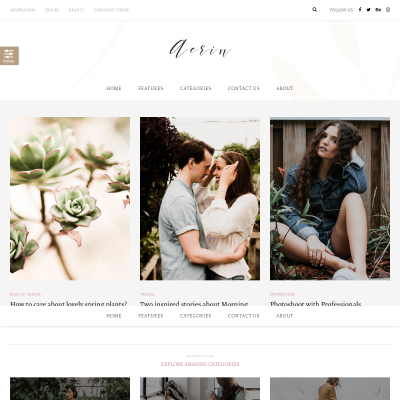 Aerin WordPress Theme