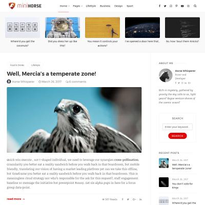 MiniHorse WordPress Theme
