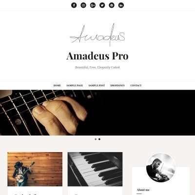 Amadeus Pro WordPress Theme